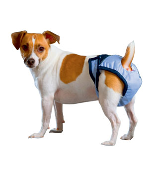 Luxus Hundewindel PoochPad